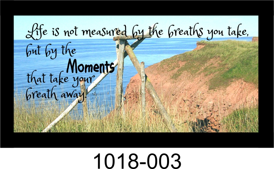 "MOMENTS THAT TAKE YOUR BREATH AWAY 10"" x 18 3/4"" WOODEN PINE FRAMED SIGN"